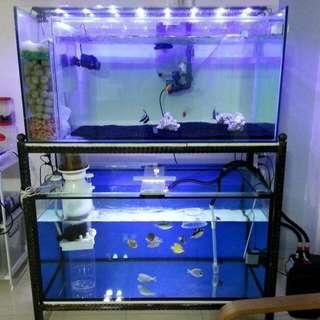 IOS FISH TANK N Stand