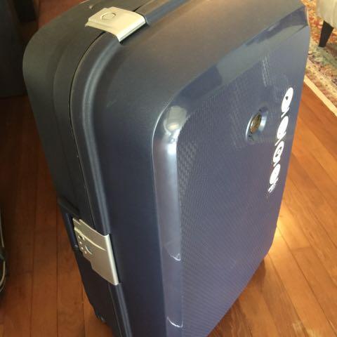 Delsey Cargo Bag