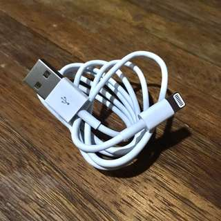 Apple iPhone USB Lightning Cable [Authentic]