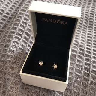 Pandora Star Earrings