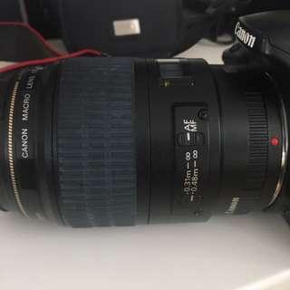 Canon ultrasonic EF 100mm f2.8 Marco USM + 450D