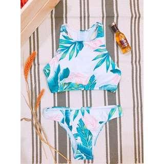 🌴棕櫚樹比基尼泳衣