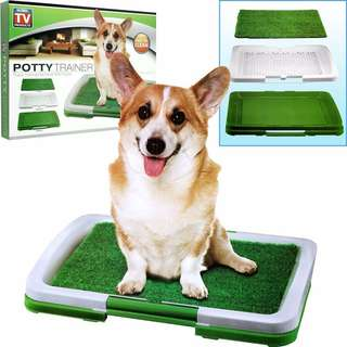 Potty Trainer for Puppies
