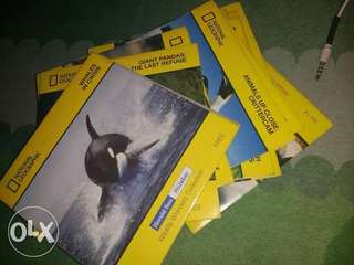 National Geographic Wildlife Wonders Collection DVD