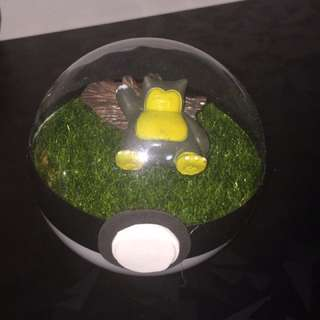 Pokemon Terrarium