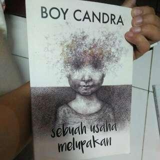 Novel Boycandra