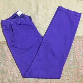 L.O.G.G. by H&M Purple Pants/Slacks (Authentic)
