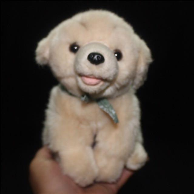 🐶仿真可愛領巾黃金獵犬 微笑小狗玩偶 坐姿
