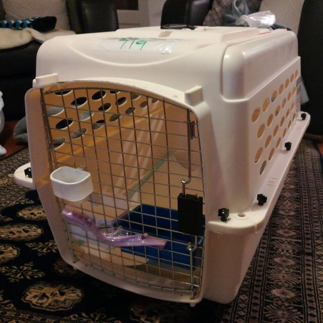 Airline Approved Petmate Crate Cage Cat Dog