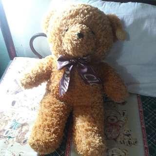 蝴蝶結泰迪熊熊❤