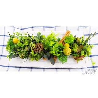 ✨9折優惠✨🌿植栽掛飾🌱