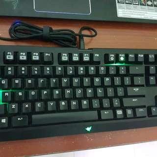 Razer blackwidow TE Mechanical Silent Keys