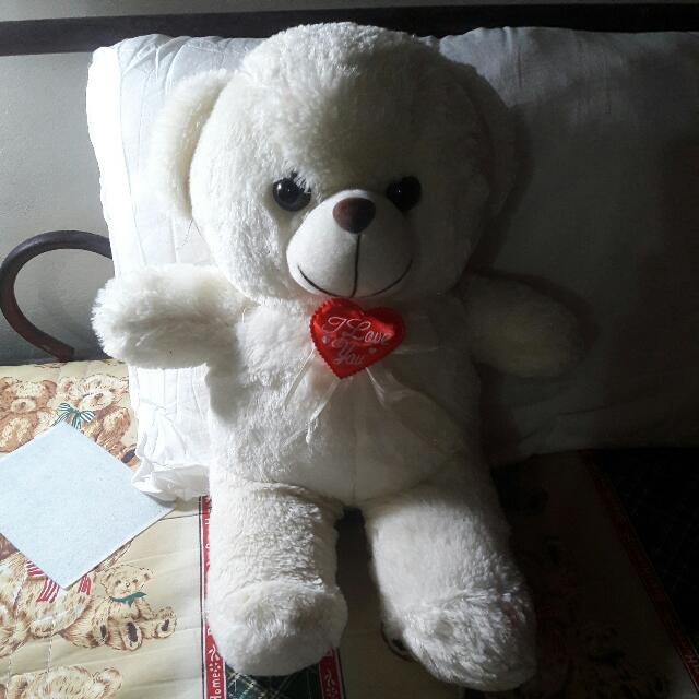 白色泰迪熊#好物任你換