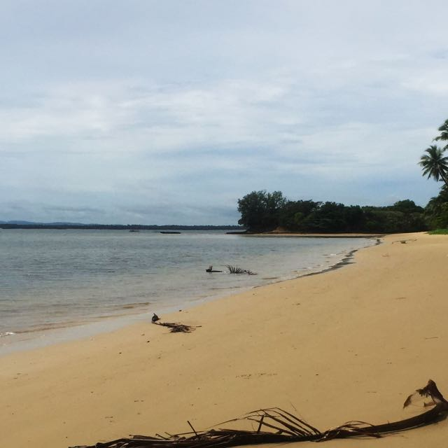 BeachFront Farm