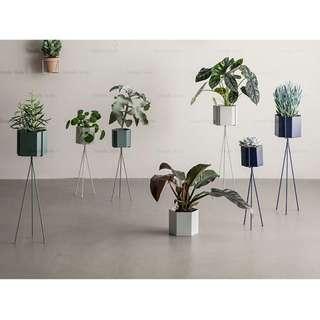 Oui.abi Indoor office Designer Home planter plant rack stand multi colour pot