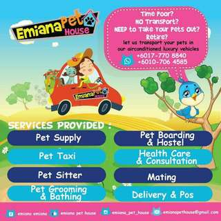 Delivery services for cat lovers