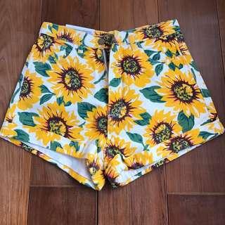 全新正品/American Apparel向日葵高腰短褲