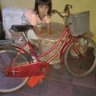 Sepeda Besar