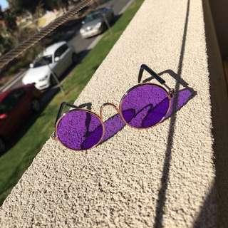 Cat Or Dog Sunglasses