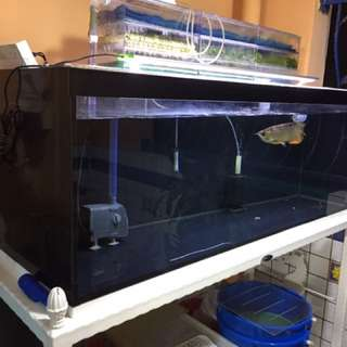 4ft x 1.5 x 1.5 Tank For Sale