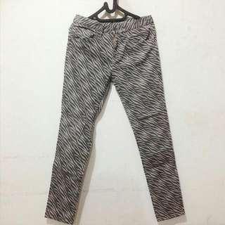 Zebra Pants (Uniqlo)
