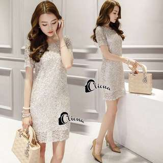 Nelly Luxury Soft Silver Lace Cocktail Dress