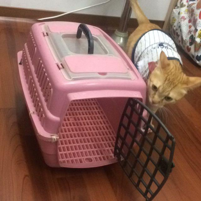 【搬家出清大降價⬇️】 寵物外出籠