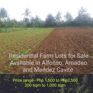 RESIDENTIAL FARM LOTS IN CAVITE!