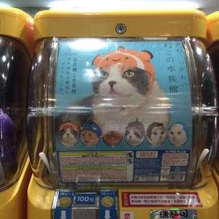 貓帽水族館系列 透抽2個便宜賣