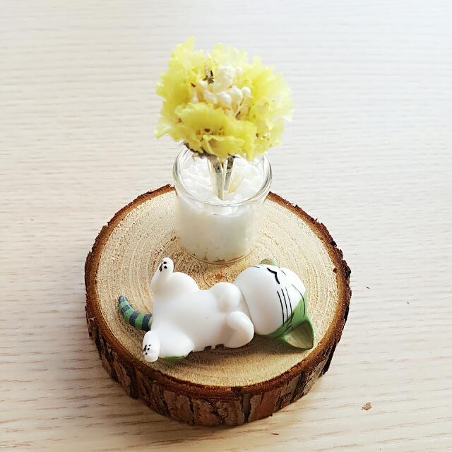限時免運)全新手作原創迷你乾燥花+蛋黃哥或、龍貓、貓貓+木片