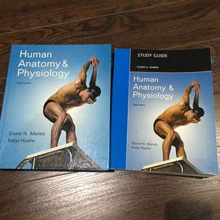A&P By Marieb & Hoehn 8th Edition