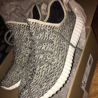 Yeezy Turtle Dove US10 OG all