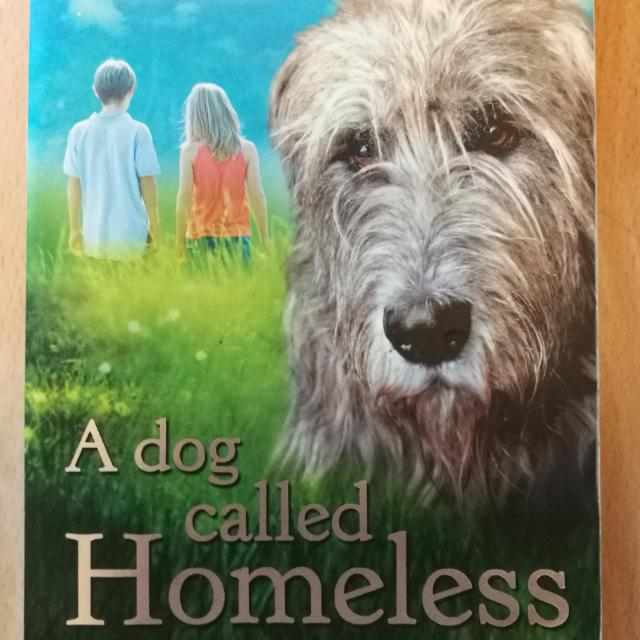 A Dog Called Homeless Books Stationery Story Books On Carousell