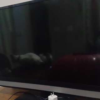 LED TV 32' TOSHIBA