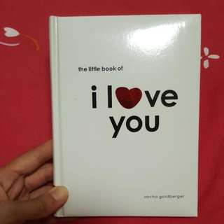 the little book of i love you - sacha goldberger