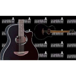 Yamaha APX500II Thinline Acoustic-Electric Guitar (Black)