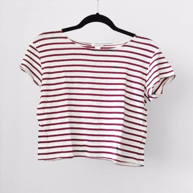 Cropped T Shirts