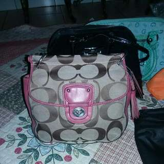 Coach Ori Limited Edt
