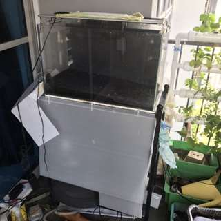2ft Crystal Glass Tank + stand