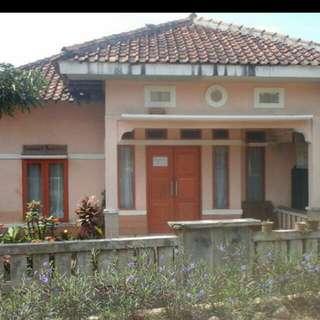 Rumah Dan Tanah Dijual