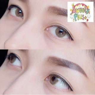 Contact Lens - Sweety Hydrocor Brown