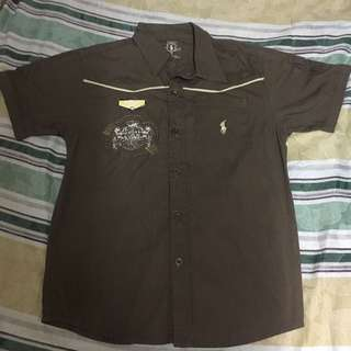 Brown Polo for Kids