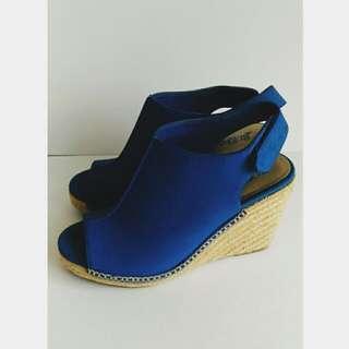 Blue Wedges
