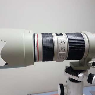 Canon EF 70-200 F4 L IS USM with Hood