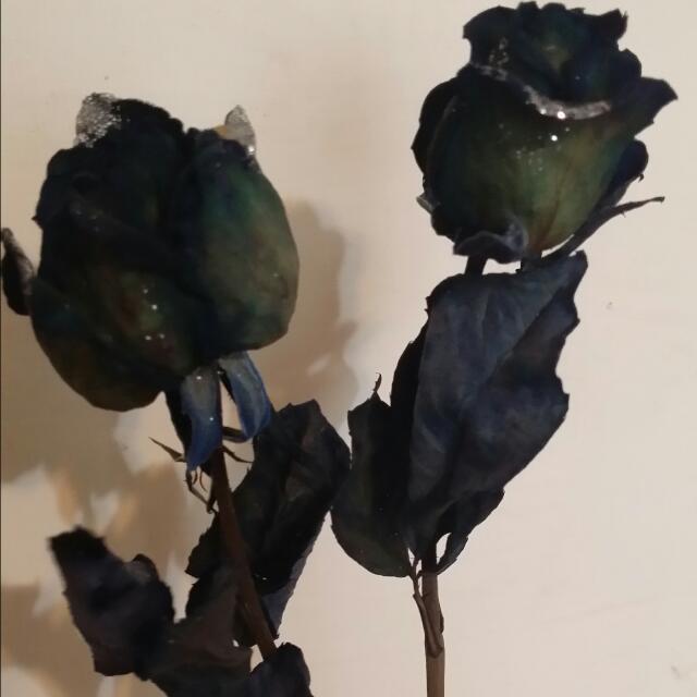 乾燥藍玫瑰
