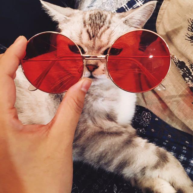 ‼️大红色霓虹復古圓墨镜