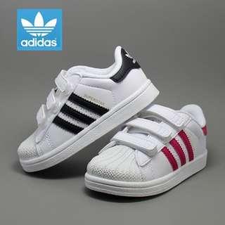 【現貨秒發】愛迪達 Adidas superstar 金標貝殼頭魔鬼氈童鞋  愛迪達童鞋 親子