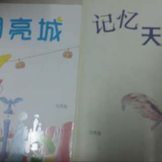 Assorted Chinese Novel Bookd