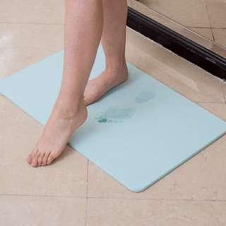 Earth Mat / Carpet