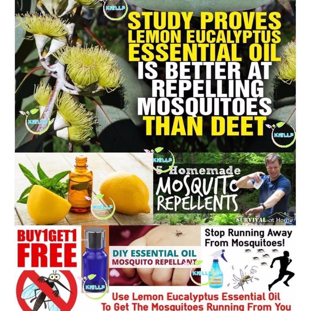Lemon Eucalyptus DIY Essential Oil